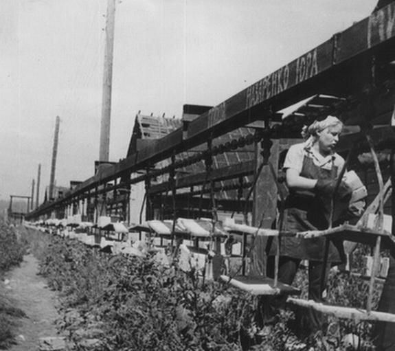 Кирпичный завод Т. Бубнова